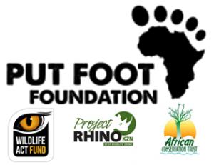 pf_foundation